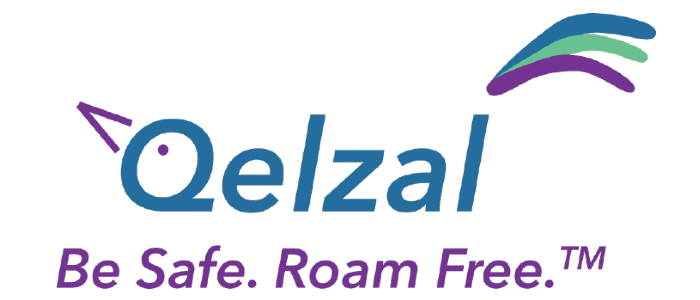 connect sdvg san diego venture group cool companies 2017 fundraising program startup business qelzal logo