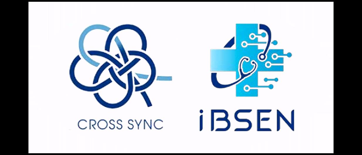 Cross Sync IBSEN